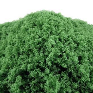 Medium Green Loose Foliage